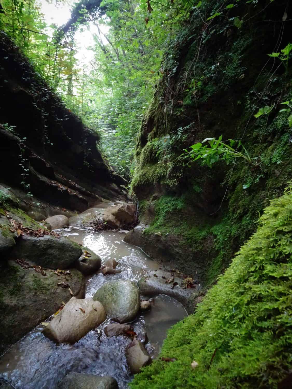 canea mulini cascatelle trekking sentiero itinerario rete sentieristica san marino visite guidate guide turistiche hiking montefeltro rimini avventura divertimento